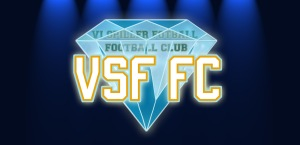 VSF-Bling2 copy